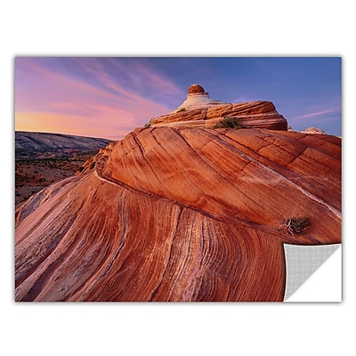 ArtWall 'Paria Wilderness' Art Appeelz Removable Graphic Wall Art 14