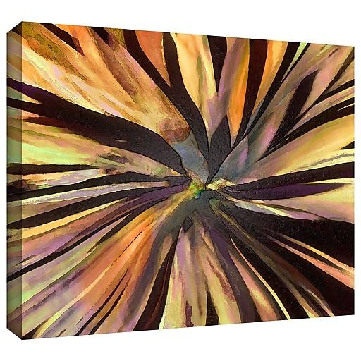 """ArtWall """"Suculenta Paleta"""" Gallery-Wrapped Canvas 18"""" x 24"""" (0uhl035a1824w)"""