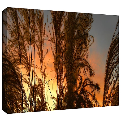 """ArtWall 'Summer Grass' Gallery-Wrapped Canvas 18"""" x 36"""" (0uhl037a1836w)"""