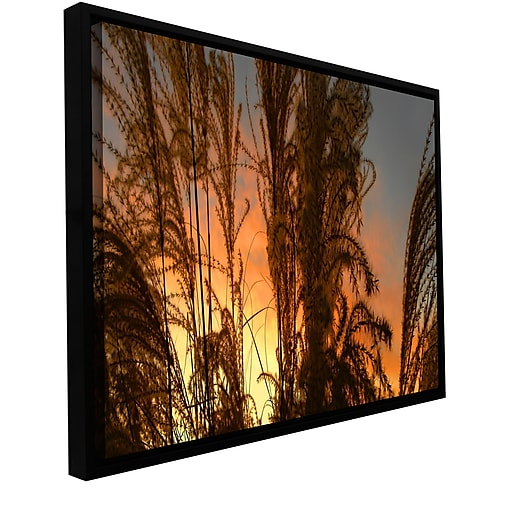 "ArtWall 'Summer Grass' Gallery-Wrapped Canvas 12"" x 24"" Floater-Framed (0uhl037a1224f)"