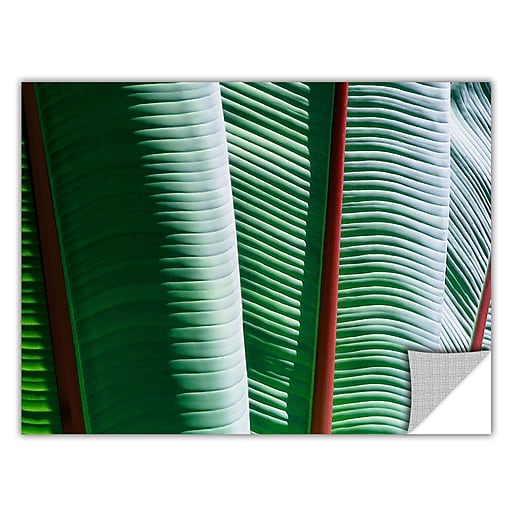 """ArtWall """"Tropicality"""" Art Appeelz Removable Wall Art Graphic 36"""" x 48"""" (0uhl042a3648p)"""