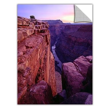 ArtWall 'Tuweep Overlook' Art Appeelz Removable Wall Art Graphic 14