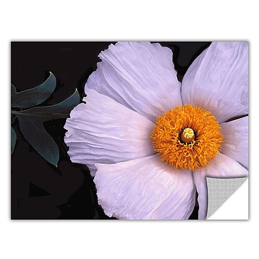 "ArtWall 'Wild Hibiscus' Art Appeelz Removable Wall Art Graphic 14"" x 18"" (0uhl044a1418p)"