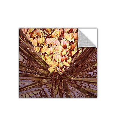ArtWall 'Yucca Impression' Art Appeelz Removable Wall Art Graphic 14