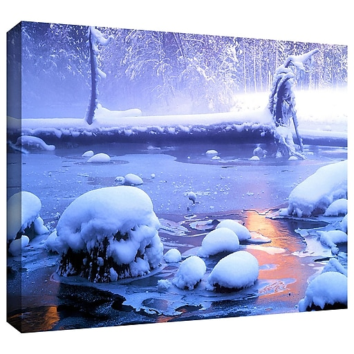 "ArtWall 'Artist Light' Gallery-Wrapped Canvas 24"" x 32"" (0uhl047a2432w)"