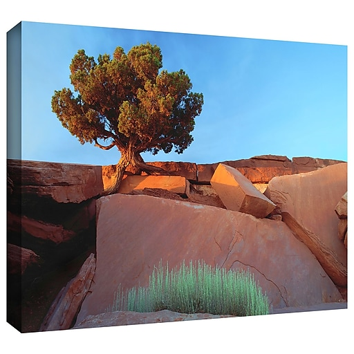 "ArtWall 'Dead Horse Point' Gallery-Wrapped Canvas 18"" x 24"" (0uhl049a1824w)"