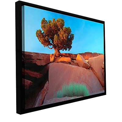 ArtWall 'Dead Horse Point' Gallery-Wrapped Floater-Framed Canvas 24