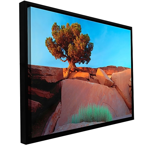 "ArtWall 'Dead Horse Point' Gallery-Wrapped Canvas 36"" x 48"" Floater-Framed (0uhl049a3648f)"