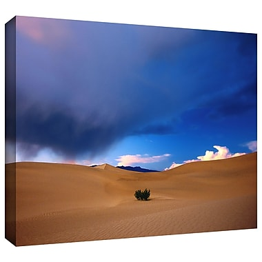 Artwall 'Death Valley Winter' Gallery-Wrapped Canvas 36
