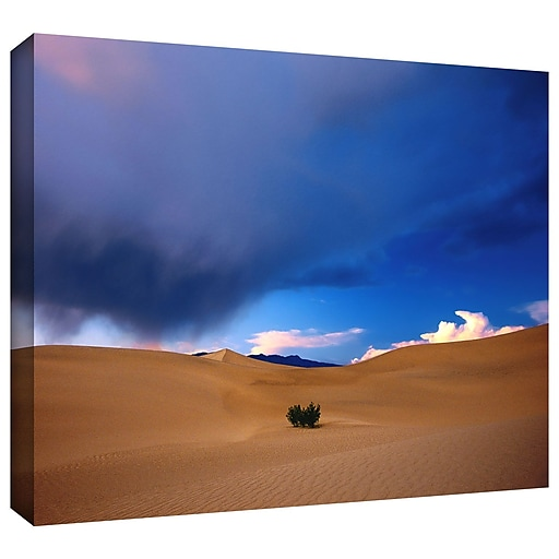"""ArtWall """"Death Valley Winter"""" Gallery-Wrapped Canvas 24"""" x 32"""" (0uhl050a2432w)"""