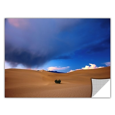 ArtWall 'Death Valley Winter' Art Appeelz Removable Wall Art Graphic 14