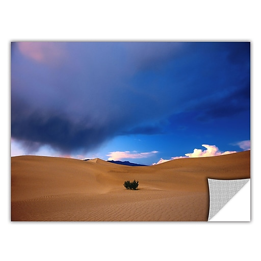 "ArtWall 'Death Valley Winter' Art Appeelz Removable Wall Art Graphic 14"" x 18"" (0uhl050a1418p)"