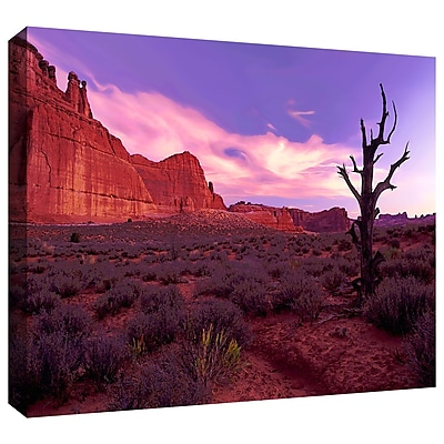 ArtWall 'High Desert Dawn' Gallery-Wrapped Canvas 36