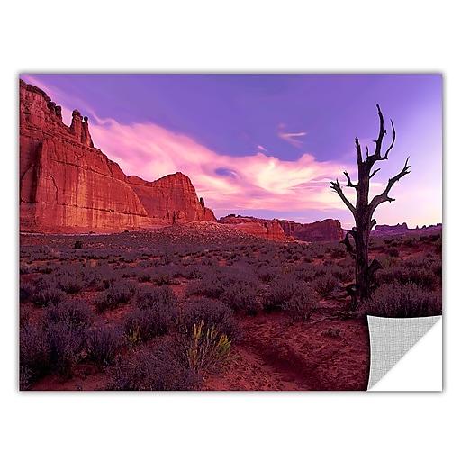 """ArtWall 'High Desert Dawn' Art Appeelz Removable Wall Art Graphic 36"""" x 48"""" (0uhl051a3648p)"""