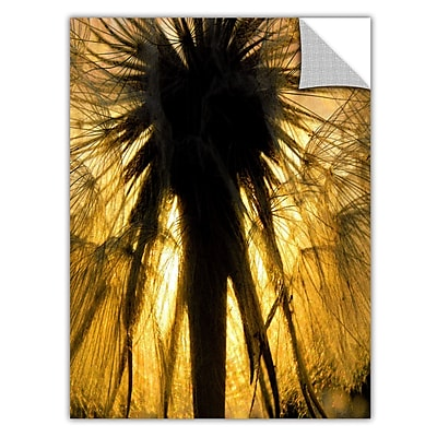 ArtWall 'Heart of a Lion-Dandelion' Art Appeelz Removable Wall Art Graphic 24