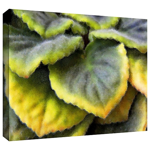 """ArtWall 'Layers' Gallery-Wrapped Canvas 18"""" x 24"""" (0uhl056a1824w)"""