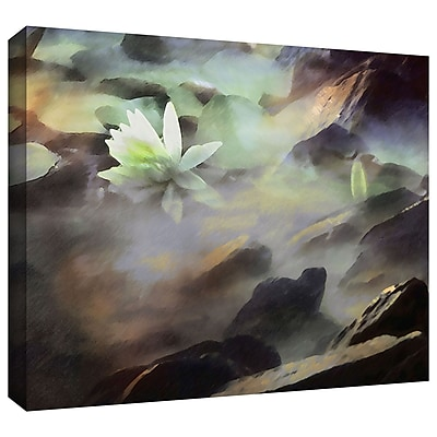 ArtWall 'Lily In Rocks' Gallery-Wrapped Canvas 24