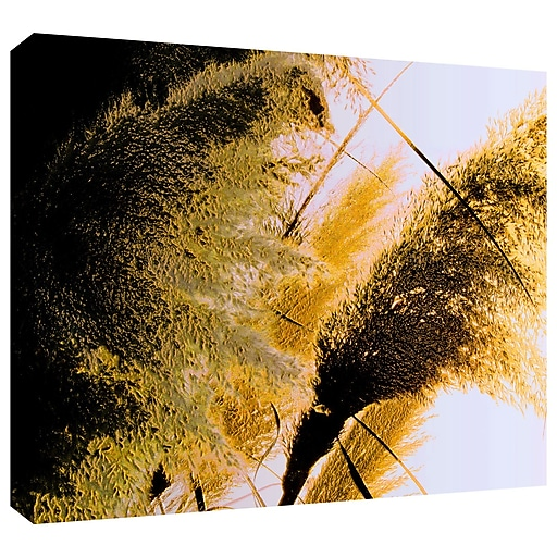 "ArtWall ""Pampas In Relief"" Gallery-Wrapped Canvas 24"" x 32"" (0uhl061a2432w)"