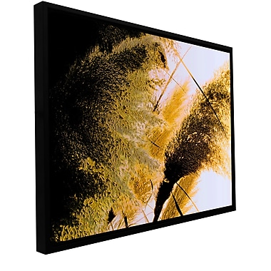 ArtWall 'Pampas In Relief' Gallery-Wrapped Floater-Framed Canvas 24