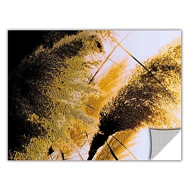 ArtWall 'Pampas In Relief' Art Appeelz Removable Wall Art Graphic 24