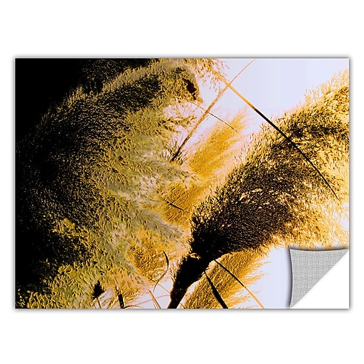 """ArtWall 'Pampas In Relief' Art Appeelz Removable Wall Art Graphic 14"""" x 18"""" (0uhl061a1418p)"""