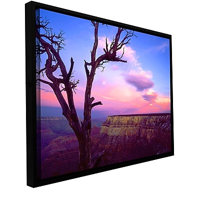 ArtWall 'South Rim Moon' Gallery-Wrapped Canvas 18