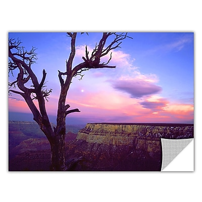ArtWall 'South Rim Moon' Art Appeelz Removable Wall Art Graphic 24