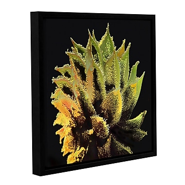 ArtWall 'Desert Vision' Gallery-Wrapped Canvas 24