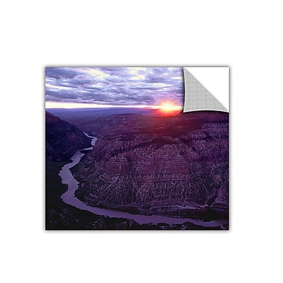 ArtWall 'Green River Dinosaur' Art Appeelz Removable Wall Art Graphic 24