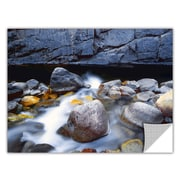 "ArtWall 'Kings River' Art Appeelz Removable Wall Art Graphic 36"" x 48"" (0uhl079a3648p)"