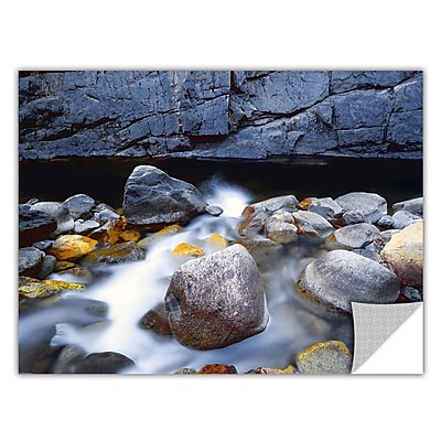ArtWall 'Kings River' Art Appeelz Removable Graphic Wall Art 18