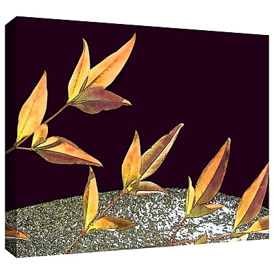 ArtWall 'Natural World' Gallery-Wrapped Canvas 14