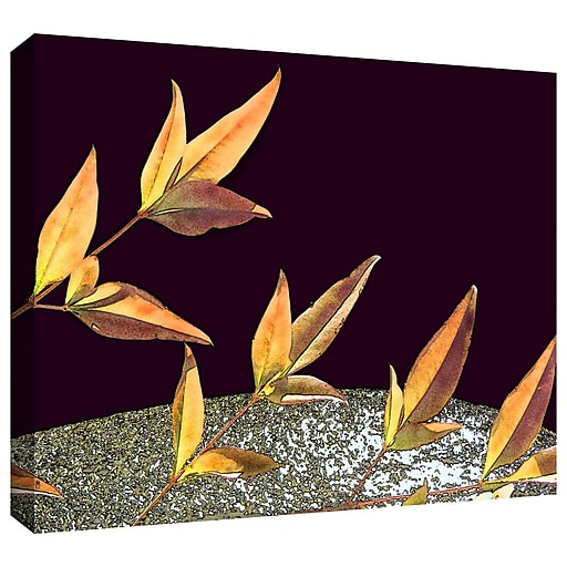 "ArtWall 'Natural World' Gallery-Wrapped Canvas 18"" x 24"" (0uhl086a1824w)"