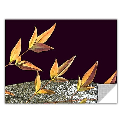 ArtWall 'Natural World' Art Appeelz Removable Wall Art Graphic 18