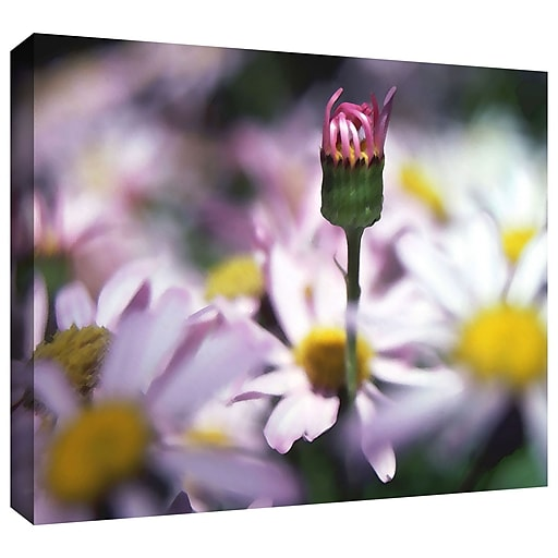 "ArtWall 'New Arrival' Gallery-Wrapped Canvas 18"" x 24"" (0uhl088a1824w)"