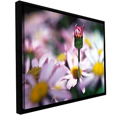 ArtWall 'New Arrival' Gallery-Wrapped Canvas 36