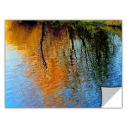 "ArtWall 'Rogue Reflections' Art Appeelz Removable Wall Art Graphic 36"" x 48"" (0uhl095a3648p)"