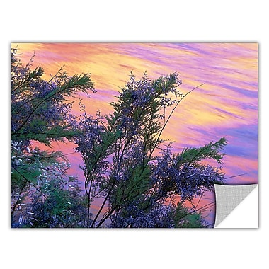 ArtWall 'Sandstone Reflections' Art Appeelz Removable Wall Art Graphic 18