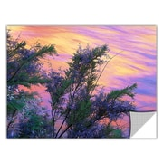 "ArtWall 'Sandstone Reflections' Art Appeelz Removable Wall Art Graphic 14"" x 18"" (0uhl096a1418p)"