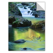 "ArtWall 'Sol Duc River Reflect' Art Appeelz Removable Graphic Wall Art 14"" x 18"" (0uhl097a1418p)"