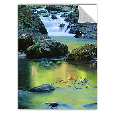 ArtWall 'Sol Duc River Reflect' Art Appeelz Removable Graphic Wall Art 14