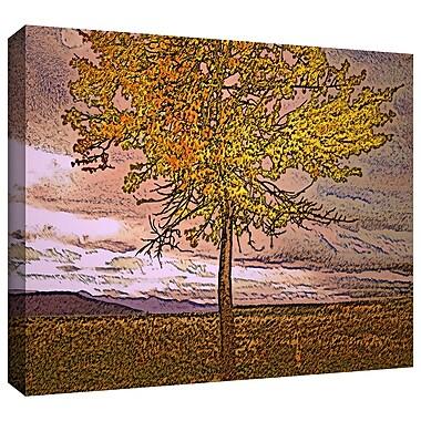 ArtWall 'Teton Meadow Fall' Gallery-Wrapped Canvas 14