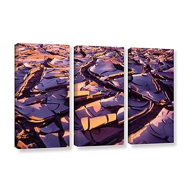 ArtWall 'Barro Magnifico' 3-Piece Gallery-Wrapped Canvas Set 36