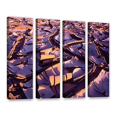 ArtWall 'Barro Magnifico' 4-Piece Gallery-Wrapped Canvas Set 24