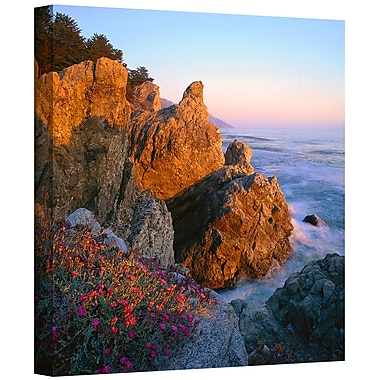 ArtWall 'Big Sur Sunset' Gallery-Wrapped Canvas 24