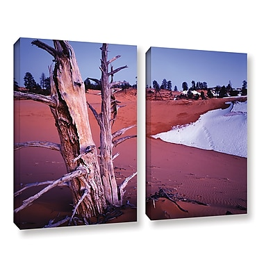 ArtWall 'Coal Dunes Dusk' 2-Piece Gallery-Wrapped Canvas Set 18