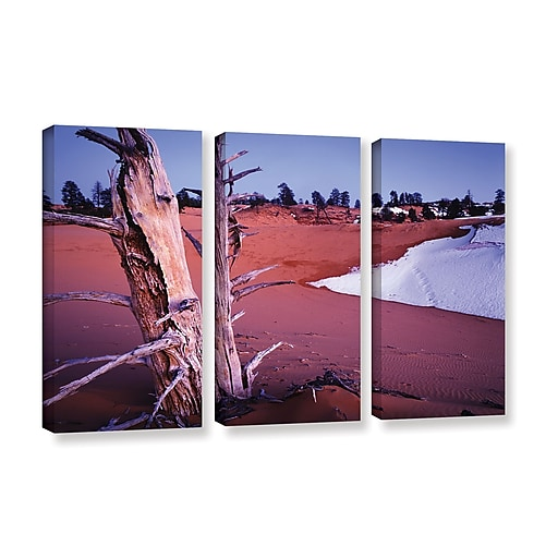 "ArtWall 'Coal Dunes Dusk' 3-Piece Gallery-Wrapped Canvas Set 36"" x 54"" (0uhl107c3654w)"