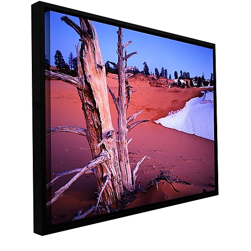 """ArtWall """"Coal Dunes Dusk"""" Gallery-Wrapped Canvas 18"""" x 24"""" Floater Framed (0uhl107a1824f)"""