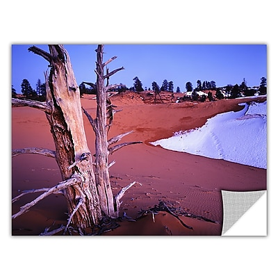 ArtWall 'Coal Dunes Dusk' Art Appeelz Removable Wall Art Graphic 24