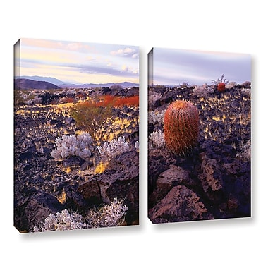 ArtWall 'In The Mojave' 2-Piece Gallery-Wrapped Canvas Set 24
